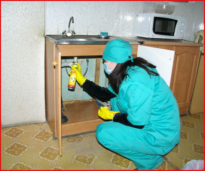 Как избавиться от тараканов в квартире в домашних условиях навсегда